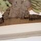 Guasina - Dettaglio albero 4