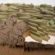 Guasina - Dettaglio albero 5