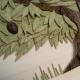 Guasina - Dettaglio albero 6